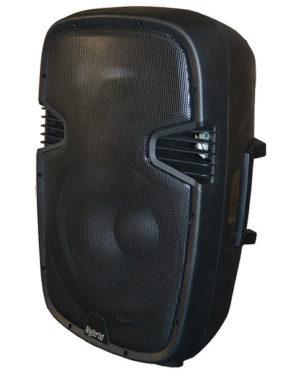 Hybrid PM15 Passive 15″ Plastic Moulded Speaker (each)